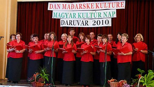 Zajednica Mađara Daruvar